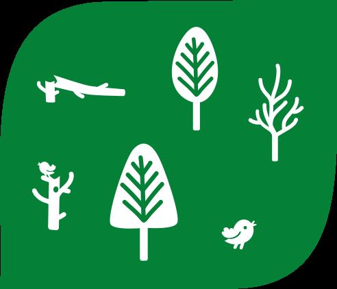 Luonnon monimuotoisuus